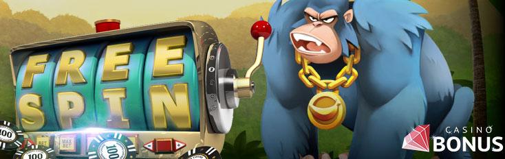casino free spins 2018